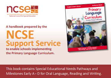 NCSE Support Service Implementing the Primary Language Curriculum